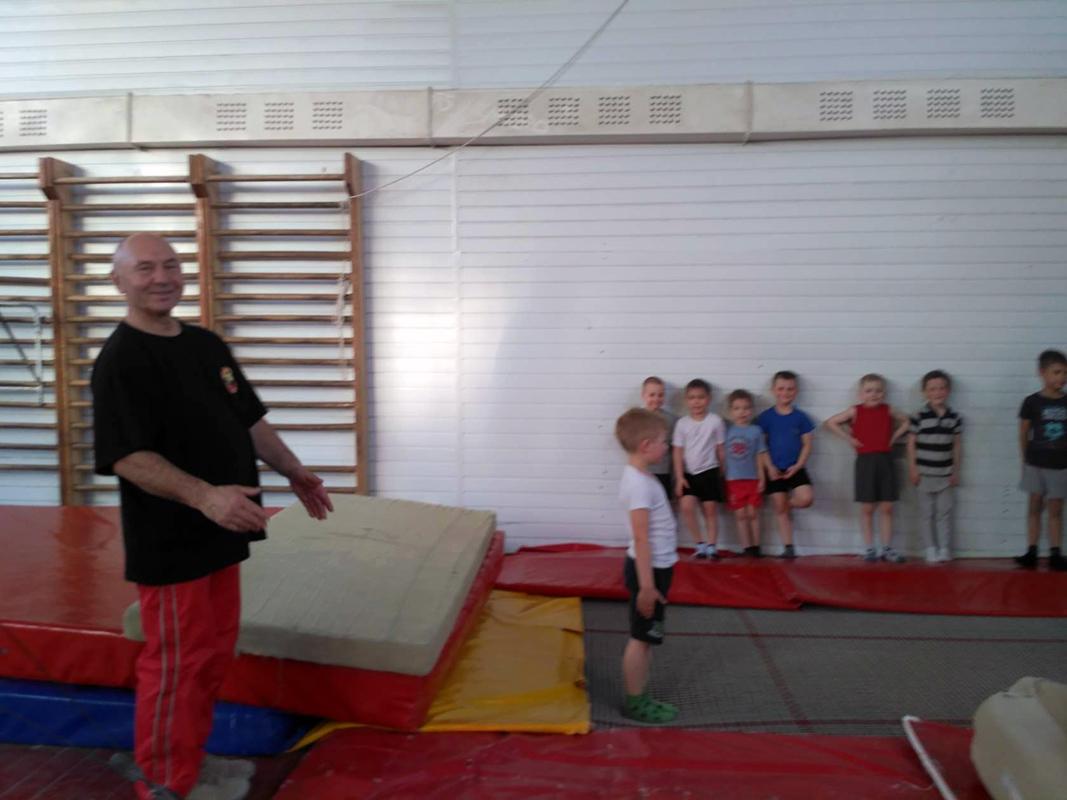 Гимнастика спортивная для мальчиков