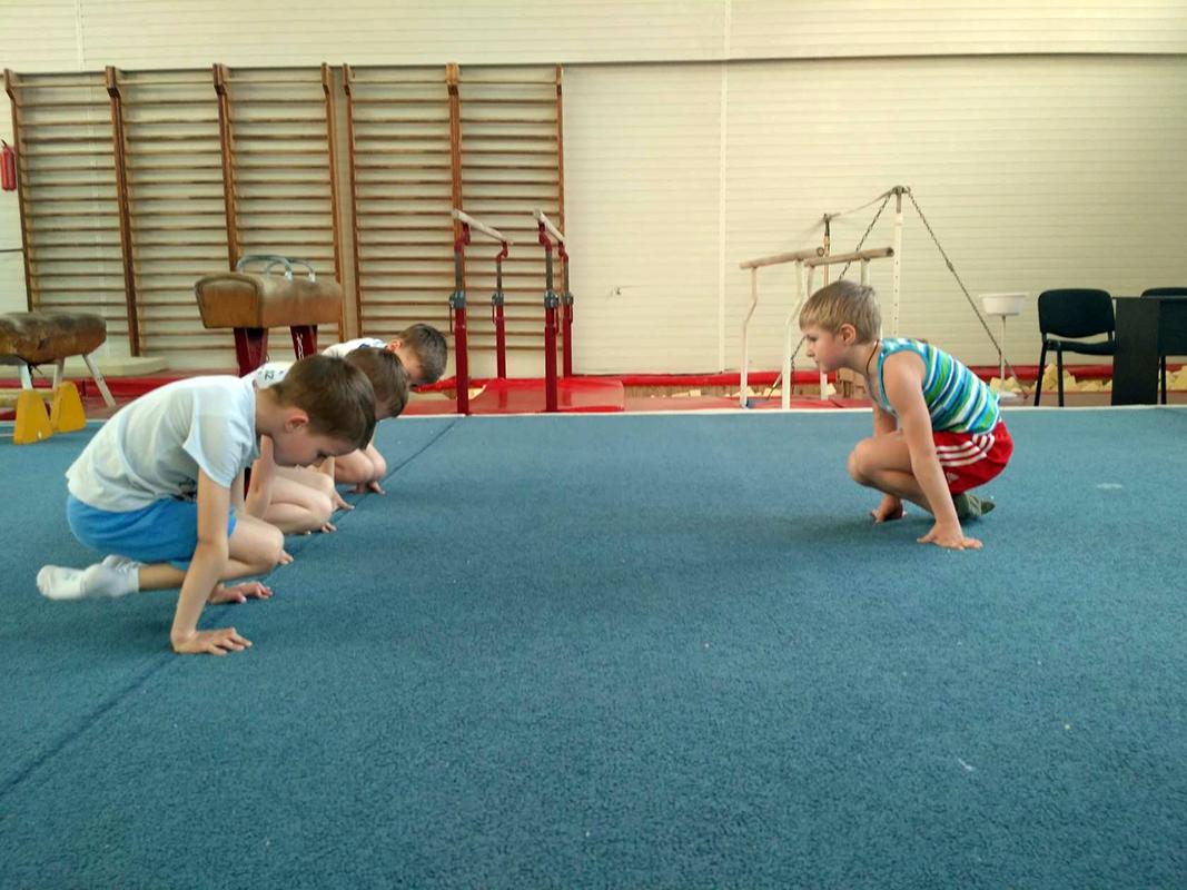 Профессиональная спортивная гимнастика для мальчиков от 5 лет
